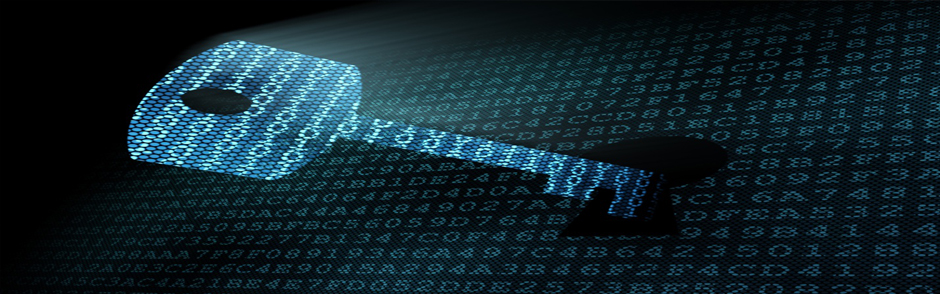 data security for small business_software